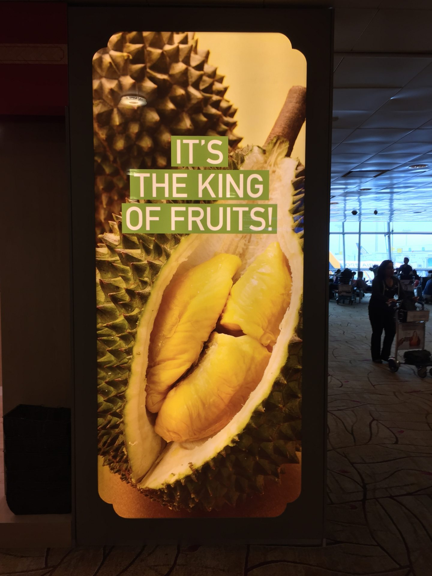 Durian King of Fruit Sign