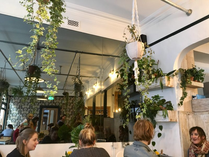 Leafy interiors at White's Botanicals cafe in Bristol